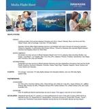Media Flight Sheet