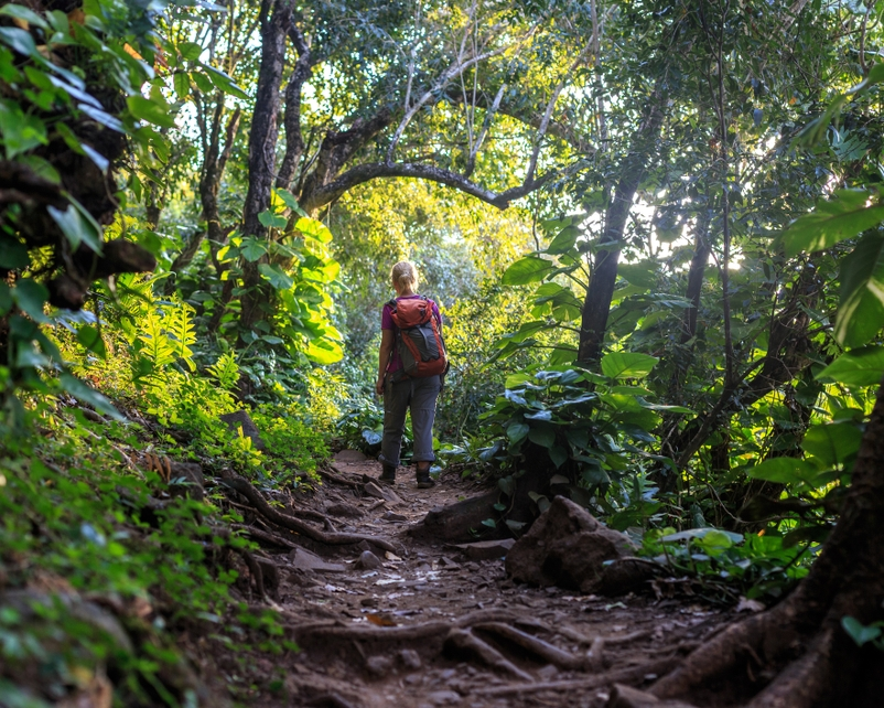 Travel Pono on Kaua'i: Adventuring the Prehistoric Outdoors Responsibly
