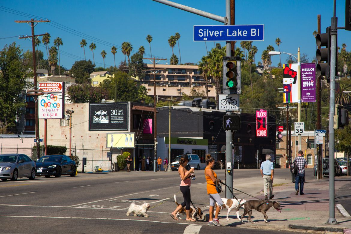 Silver Lake Blvd dog walkers