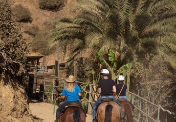 Horseback riding with Sunset Ranch