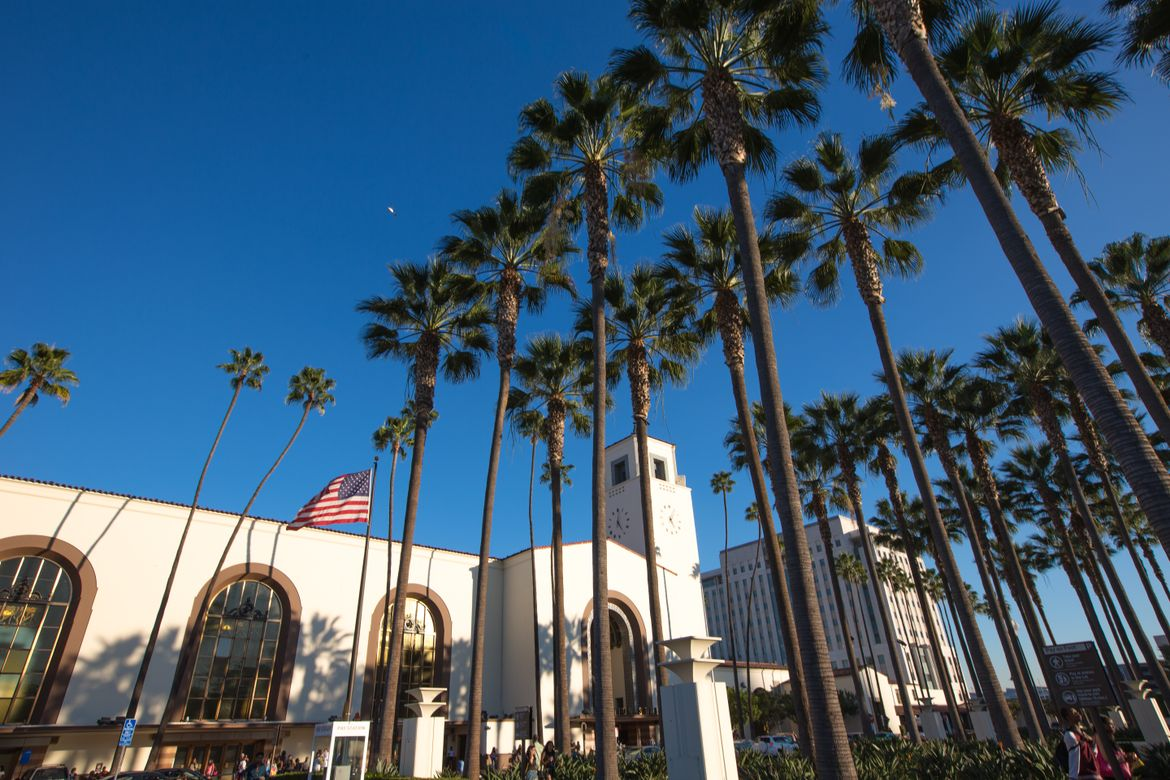Palm trees at Union Station