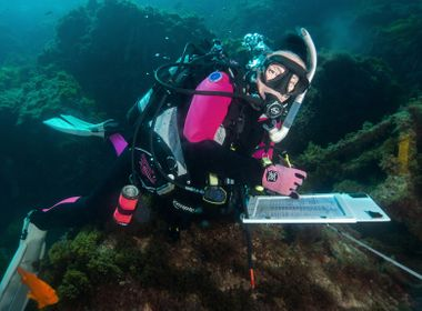 Volunteers Help Monitor Recovery of Storm-Battered Catalina Island Reef
