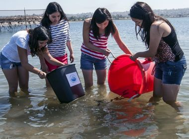 Students Raise, Release Sea Bass in Innovative STEM Program