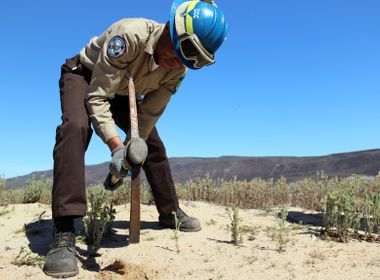 Conservation Corps Gives Military Vets a New Direction in Civilian Life