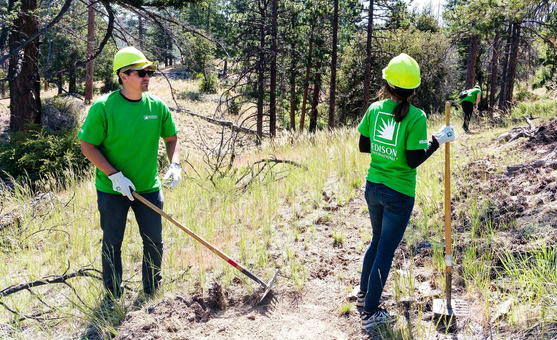 National Forest Foundation and EcoIQ