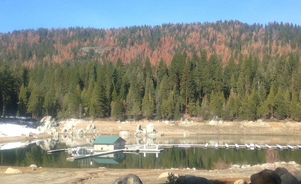 Wildfire Preparedness in Sierra Nevada