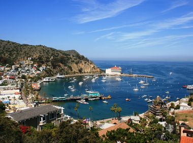 Catalina Island Gets Welcome Rains, Yet Impact of Historic Drought Remains