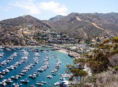 Rains Bring Some Welcome Relief for Catalina Residents, Businesses