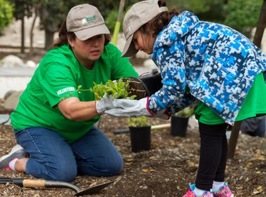 Volunteers Help Improve Green Space, Clean Air in Arcadia