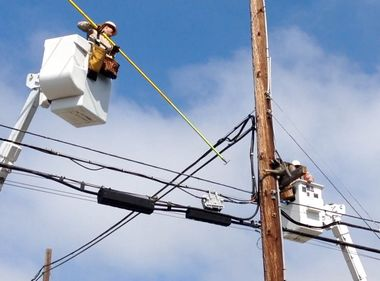 SCE Crews Rescue 'Marooned Raccoon' From Power Pole