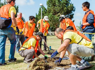 Volunteers Plant Trees in Lynwood, Part of Effort to 'Green' South LA