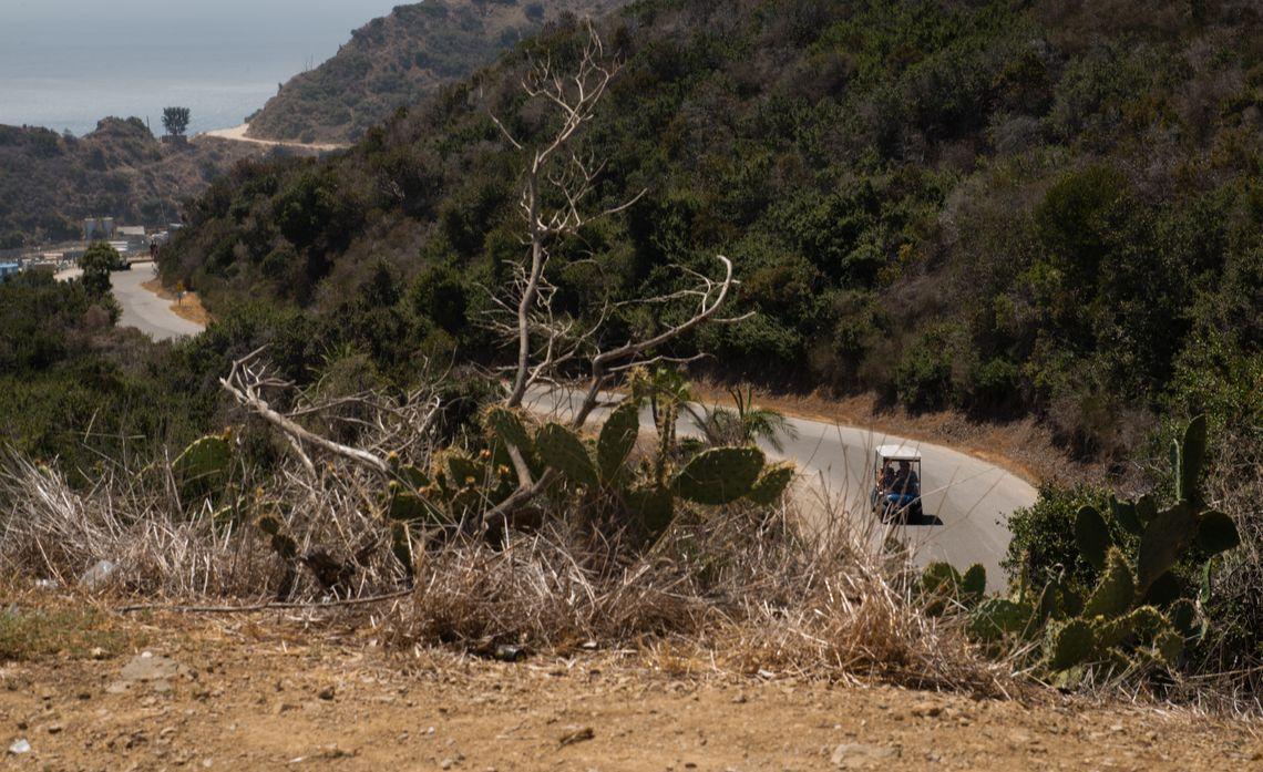 Catalina Island - Environment