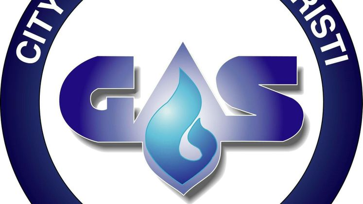 Gas Logo & Flame