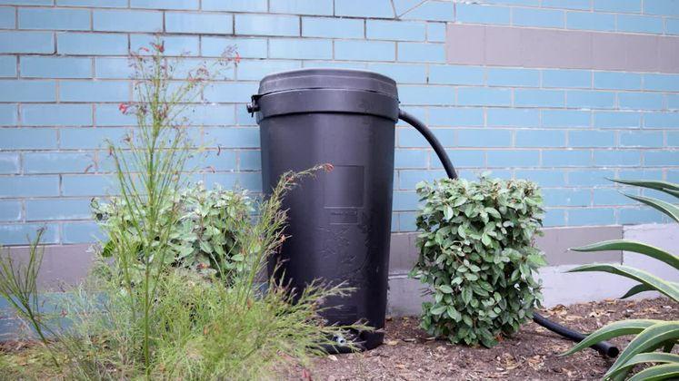 Rain Barrel Sale 2016