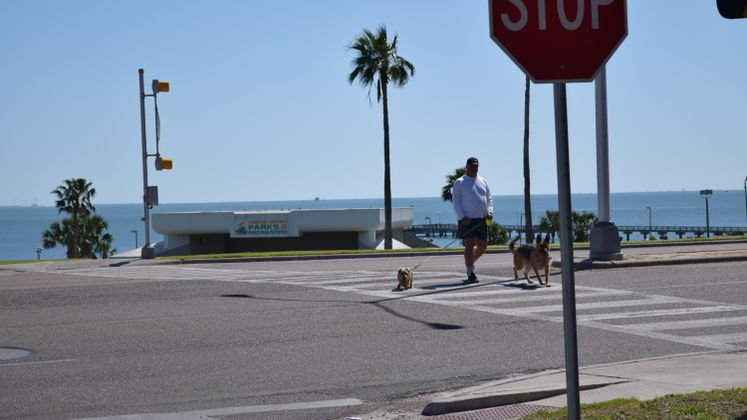 Crosswalk at Ocean Dr. and Del Mar Blvd.