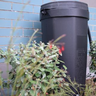Reminder: Rain Barrel Sale is Ongoing