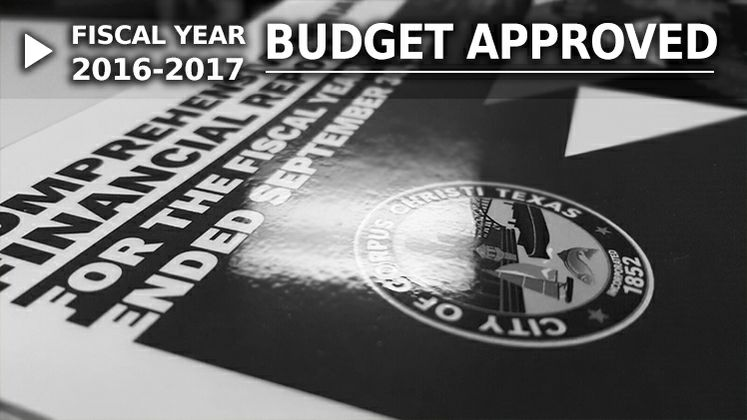Budget Graphic with Text