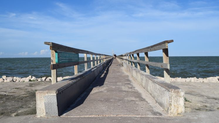 Fishing Pier at Cole Park