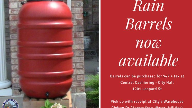 Rain Barrel Sale