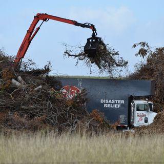 Harvey Debris Collection in Area 10 Begins Next Week