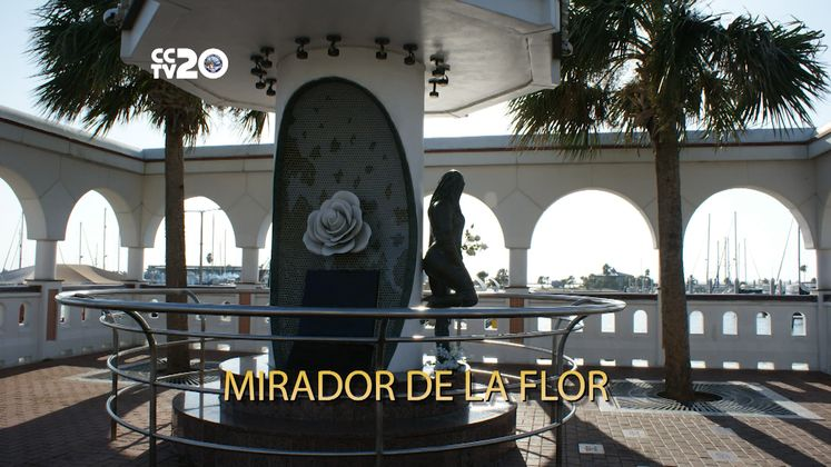 Free in CC – Mirador de la Flor