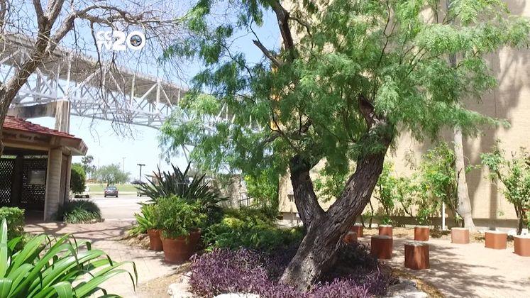 Free in CC – Xeriscape Garden