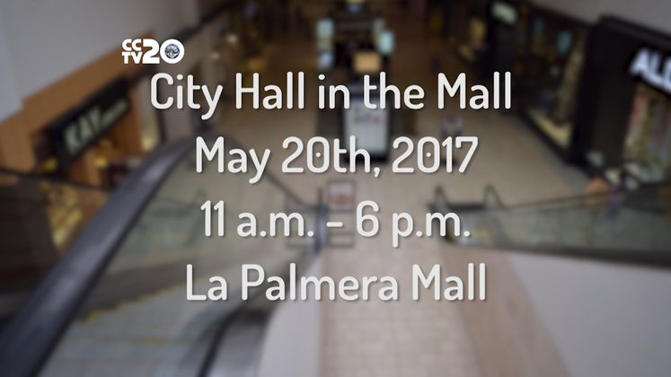 Stop By La Palmera for City Hall in the Mall