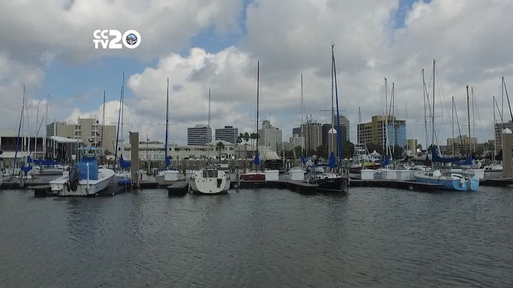Free in CC – Corpus Christi Marina