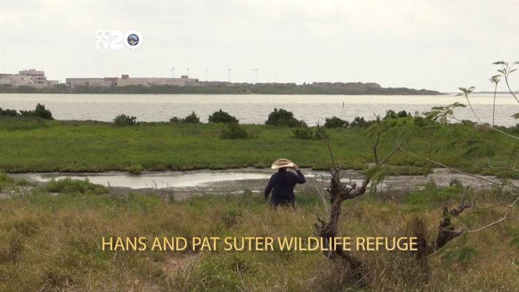 Free in CC – Hans and Pat Suter Wildlife Refuge