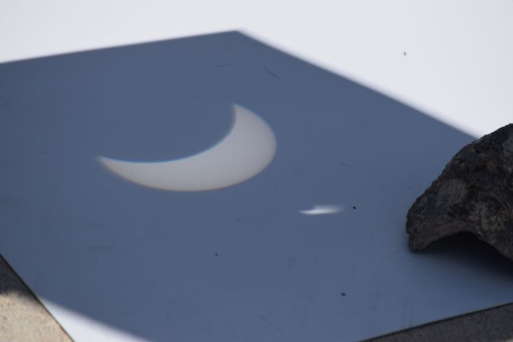 Solar Eclipse at Oso Wetlands Preserve