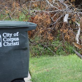 City Reminds Residents about Brush and Bulky Collection Guidelines