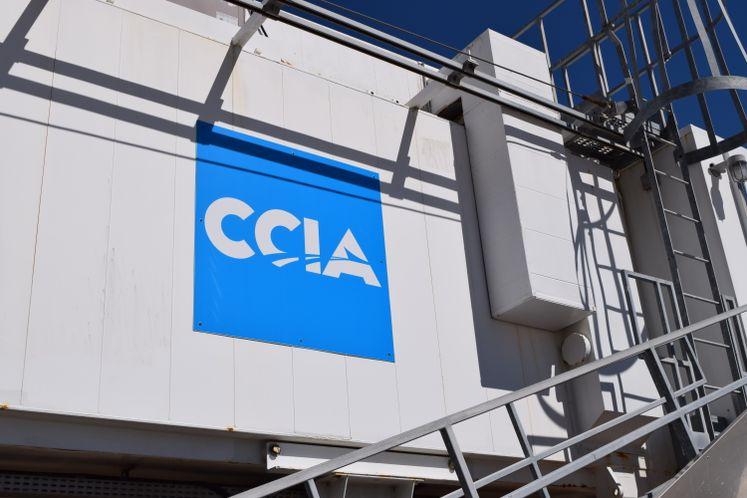 CCIA Terminal