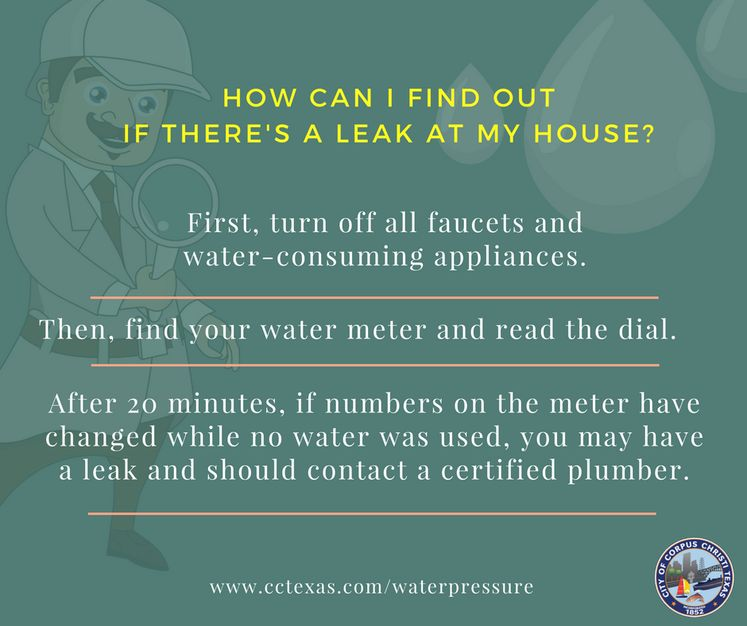 Find Leaks