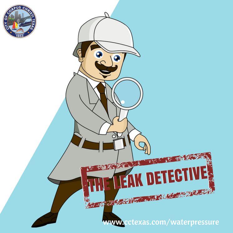 The Leak Detective