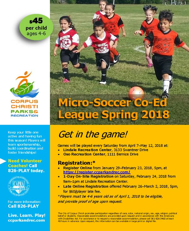 2018 Spring Soccer League