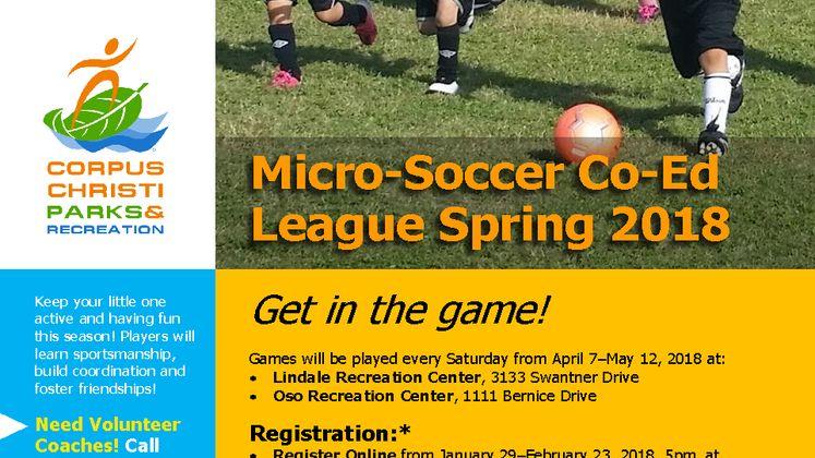 2018 Spring Soccer League