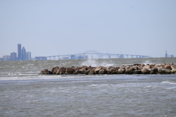 View of Harbor Bridge from TAMUCC