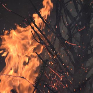 Christmas Tree Fire Safety Demonstration
