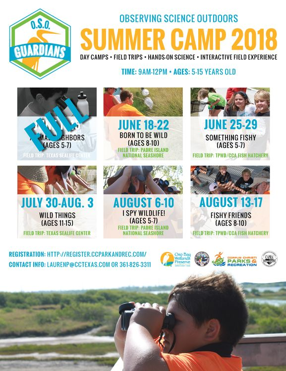 Summer Camp Flier