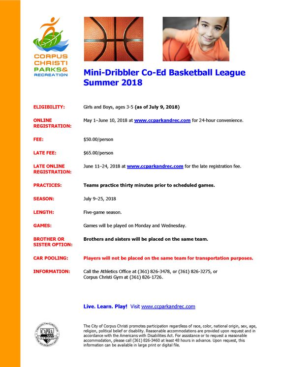 Mini-Dribbler Basketball League