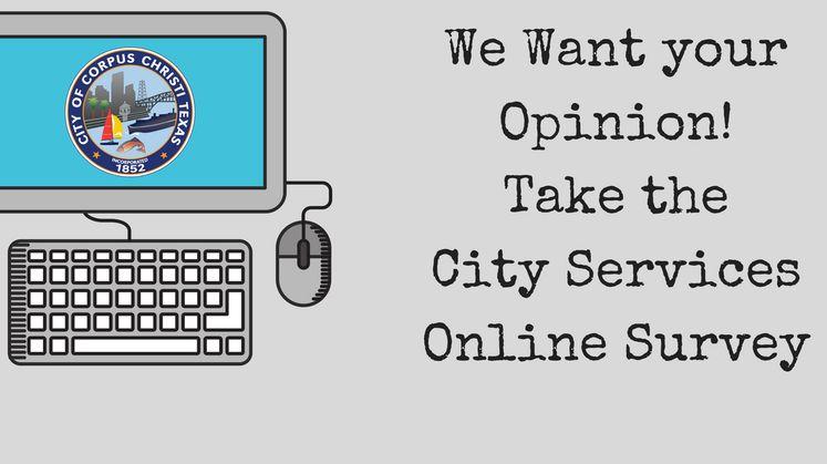 City Services Survey