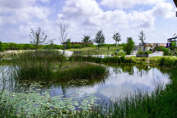 Oso Bay Wetlands Preserve