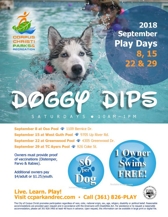 Sept Doggy Dip Flyer