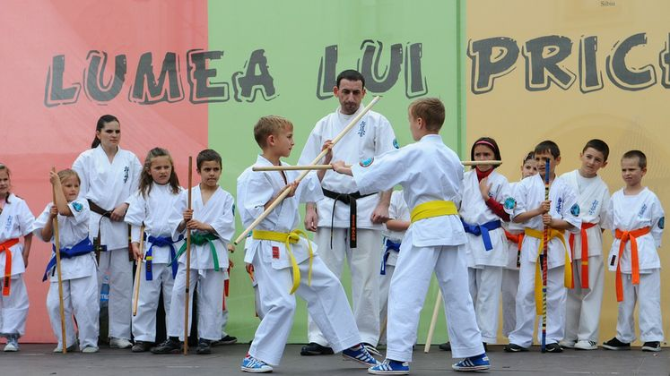 Kid Karate Class