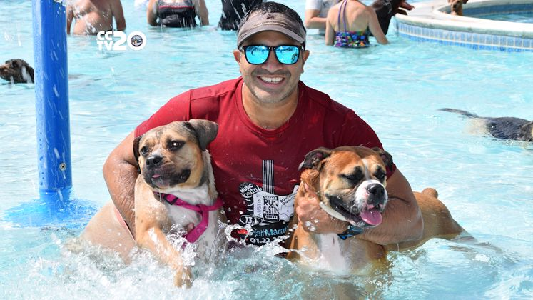 Check Out the September Doggy Dips