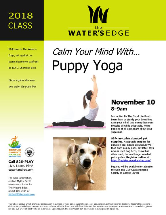 Puppy Yoga Flyer