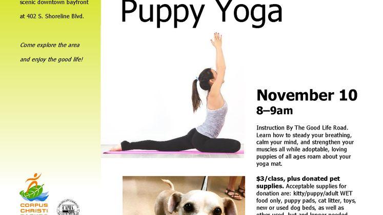 Puppy Yoga Flyer