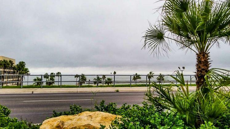 Shoreline Boulevard
