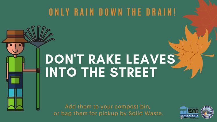 Only Rain Down the Drain