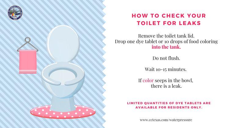 Toilet Check